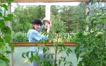 Anna ja kasvuhoone